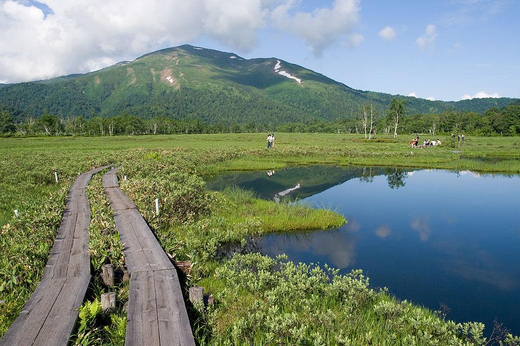 四季の山カレンダー - 夏の尾瀬と至仏山