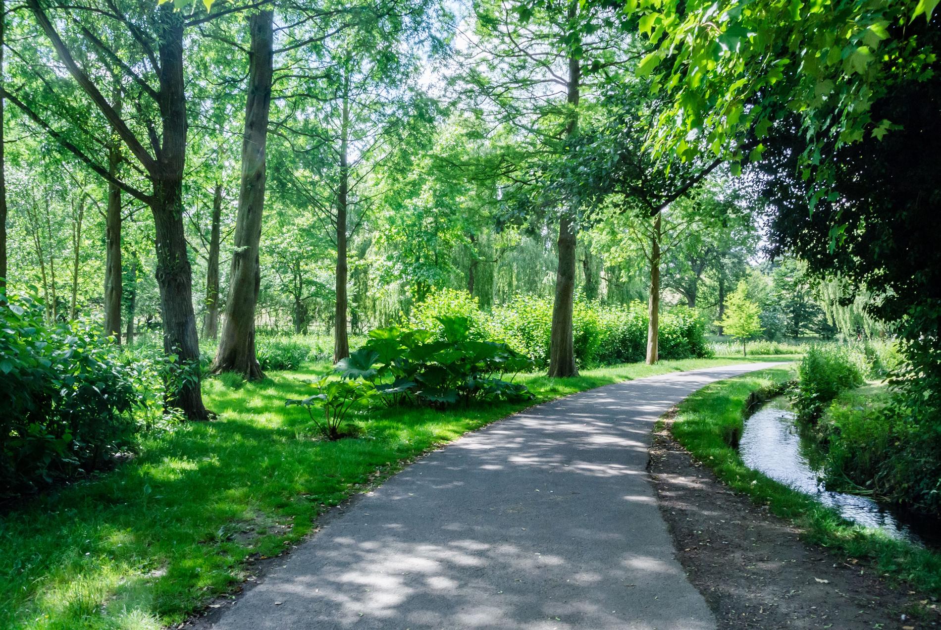 野草と樹木の散歩道 CALENDAR